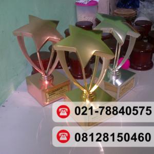 trophy timah tiang bintang